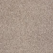Shaw Floors Nfa/Apg Color Express Accent I Everest 00176_NA214