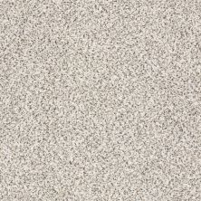 Shaw Floors Nfa/Apg Color Express Accent II Avalanche 00173_NA215