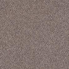 Shaw Floors Nfa/Apg Color Express Accent II Storm 00771_NA215