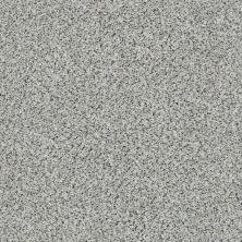 Shaw Floors Nfa/Apg Color Express Accent II Lg Italiano 00170_NA216