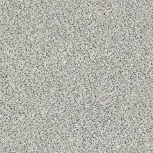 Shaw Floors Nfa/Apg Color Express Accent II Lg Avalanche 00173_NA216