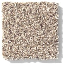 Shaw Floors Nfa/Apg Color Express Accent II Lg Everest 00176_NA216