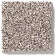 Shaw Floors Nfa/Apg Color Express Accent II Lg Cold Springs 00570_NA216