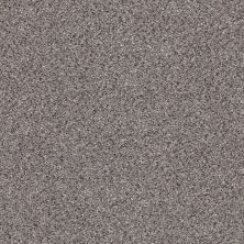 Shaw Floors Nfa/Apg Color Express Accent II Lg Soapstone 00571_NA216
