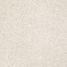 Shaw Floors Nfa/Apg Color Express Twist I Biscotti 00131_NA217