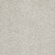 Shaw Floors Nfa/Apg Color Express Twist I Alpaca 00140_NA217