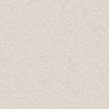 Shaw Floors Nfa/Apg Color Express Twist I Modern Loft 00154_NA217