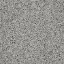Shaw Floors Nfa/Apg Color Express Twist I Flint 00544_NA217