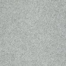 Shaw Floors Nfa/Apg Color Express Twist I Pewter 00551_NA217