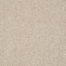Shaw Floors Nfa/Apg Color Express Twist I Hickory 00711_NA217