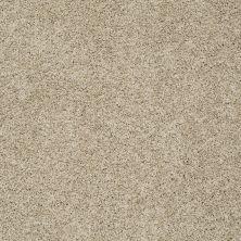 Shaw Floors Nfa/Apg Color Express Twist I Hazelnut 00750_NA217