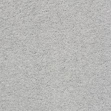 Shaw Floors Nfa/Apg Color Express Twist II Gray Owl 00538_NA218
