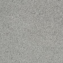 Shaw Floors Nfa/Apg Color Express Twist II Pewter 00551_NA218