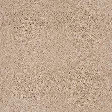 Shaw Floors Nfa/Apg Color Express Twist II Hickory 00711_NA218