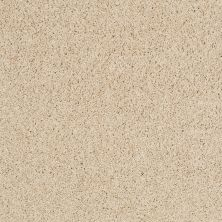 Shaw Floors Nfa/Apg Color Express Twist II Lg Toasted 00121_NA219