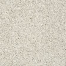 Shaw Floors Nfa/Apg Color Express Twist II Lg Alpaca 00140_NA219