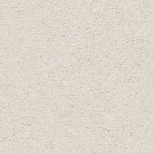 Shaw Floors Nfa/Apg Color Express Twist II Lg Modern Loft 00154_NA219