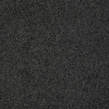 Shaw Floors Nfa/Apg Color Express Twist II Lg Urban Studio 00542_NA219