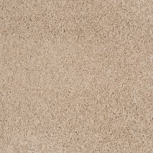 Shaw Floors Nfa/Apg Color Express Twist II Lg Hickory 00711_NA219