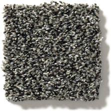 Shaw Floors Sweet Appeal Charmed Hues Meteorite 5.00E+39_00501