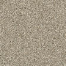 Shaw Floors You Got It I Raw Wood 00110_NA240