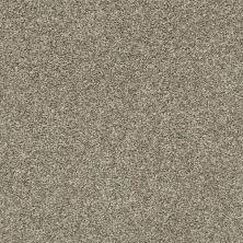 Shaw Floors You Got It I Clay 00701_NA240
