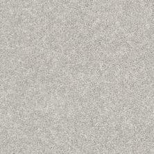 Shaw Floors You Got It II Dove 00500_NA241