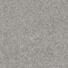 Shaw Floors You Got It II Stone Path 00503_NA241
