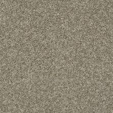 Shaw Floors You Got It II Clay 00701_NA241