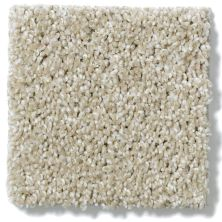 Shaw Floors Nfa/Apg Uncomplicated Frost 00104_NA263
