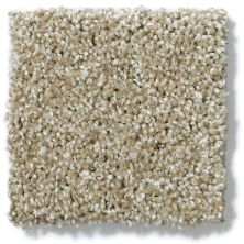 Shaw Floors Nfa/Apg Uncomplicated Wool Skein 00111_NA263