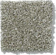 Shaw Floors Nfa/Apg Uncomplicated Silver Sage 00310_NA263