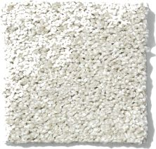 Shaw Floors Nfa/Apg Uncomplicated Cold Water 00510_NA263