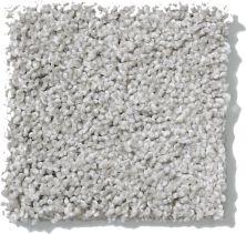 Shaw Floors Nfa/Apg Uncomplicated Sea Salt 00512_NA263