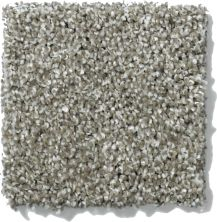 Shaw Floors Nfa/Apg Uncomplicated Pewter 00513_NA263