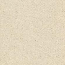 Shaw Floors Nfa/Apg Meaningful Design Canvas 00103_NA265