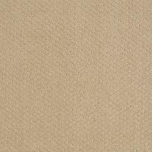 Shaw Floors Nfa/Apg Meaningful Design Fieldstone 00105_NA265