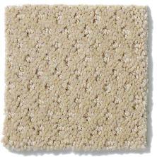 Shaw Floors Nfa/Apg Meaningful Design Wool Skein 00111_NA265