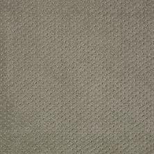 Shaw Floors Nfa/Apg Meaningful Design Silver Sage 00310_NA265