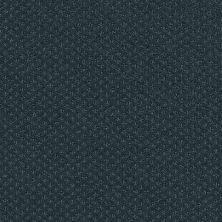 Shaw Floors Nfa/Apg Meaningful Design Indigo 00411_NA265