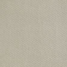 Shaw Floors Nfa/Apg Meaningful Design Cold Water 00510_NA265