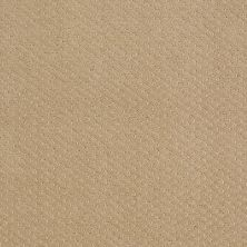 Shaw Floors Nfa/Apg Meaningful Design Natural Wood 00701_NA265