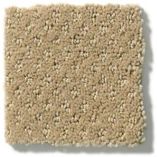 Shaw Floors Nfa/Apg Meaningful Design Mushroom 00703_NA265