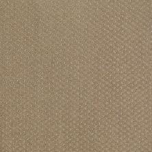Shaw Floors Nfa/Apg Meaningful Design Prairie 00710_NA265