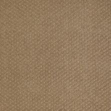 Shaw Floors Nfa/Apg Meaningful Design Travertine 00711_NA265