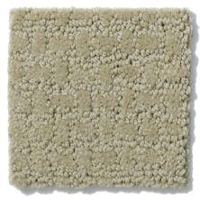 Shaw Floors Nfa/Apg World View Wool Skein 00111_NA266