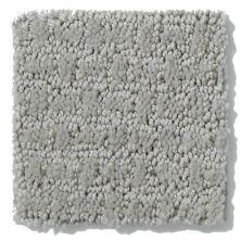Shaw Floors Nfa/Apg World View Sea Salt 00512_NA266