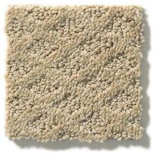 Shaw Floors Nfa/Apg Nature's Own Wool Skein 00111_NA267
