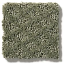 Shaw Floors Nfa/Apg Nature's Own Silver Sage 00310_NA267
