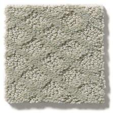 Shaw Floors Nfa/Apg Nature's Own Sea Salt 00512_NA267